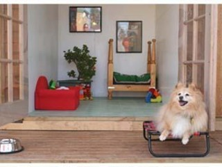 View profile: Pet Resort- One of the best in the land
