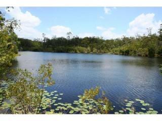 View profile: 90.5hectares ( 224 acres ) midway between Gympie and Tin Can Bay .$675,000.