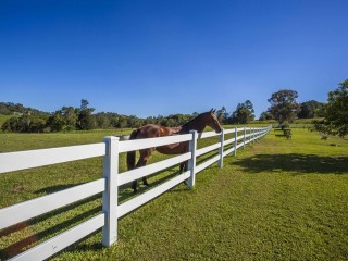 View profile: BRING THE HORSES!