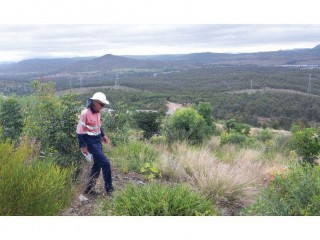 View profile: Forestry And Land Maintenance Machinery Contracting Company - Nanango, Qld