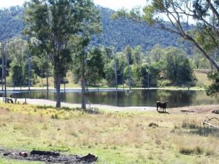 View profile: 471 acres quality undulating scrub soils - 2 adjoining blocks !