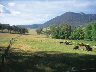 View profile: 3,500 Acre Cattle / Sheep Property with Huge Tourism Potential
