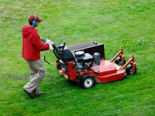 View profile: Lawn Mowing and Maintenance Business - Gold Coast