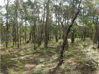 View profile: Vacant Land with Subdivision Approval - Nubeena, TAS