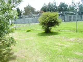 View profile: Established Boarding Kennels/Cattery plus Home on 50 Acres - Ingliston, VIC