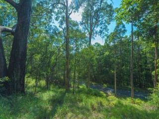 View profile: 30 acres, without the work!