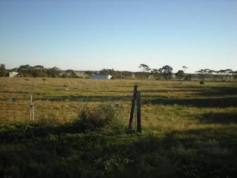 View profile: HOBBYFARM 5 ACRES 8 TITLES 35mins from Salisbury SA - Income Potential