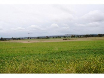 View profile: 188 Acres of Prime Mondure/Byee  ( Qld-South Burnett ) Cropping Country