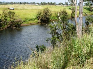 View profile: Auction - 103 hectares (253 Acre) Ex-Dairy Farm - Murgon District - This One