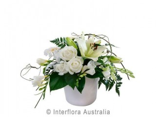 View profile: Established Leasehold Florist - Retail And Online - Cairns, Qld