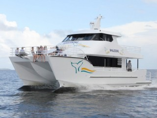 View profile: Exceptional whale watching & marine business Hervey Bay SS