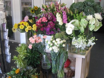 View profile: i-Blossom Florist and Gifts.