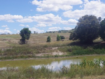 View profile: 511AC WELL WATERED GRAZING PROPERTY